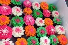 bright colored hibiscus