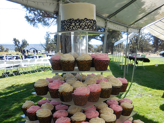 Summer Wedding with Pink and Yellow Cupcakes.